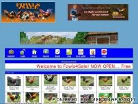fowls4sale.com - Fowls4Sale.com - Main Index